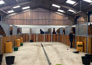 Equestrian training facilities